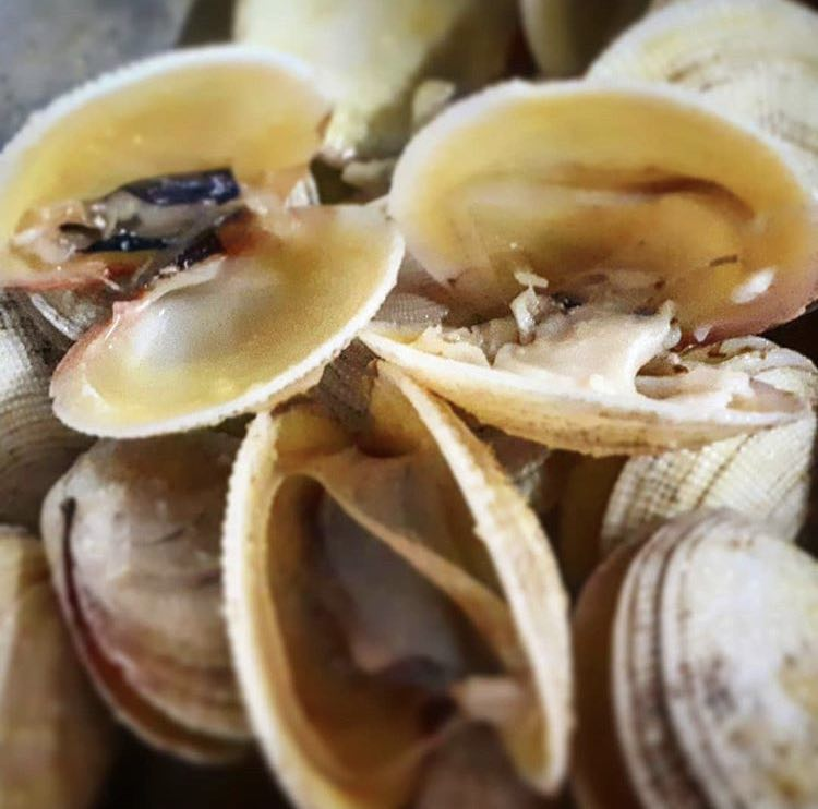 clams-seafood-mozambique-corallodge